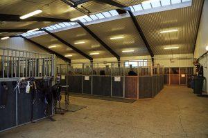 hesthus-1d5a0741