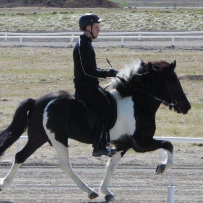 Þerney frá Feti